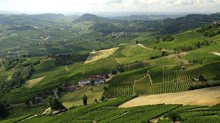 piemonte wijnstreek