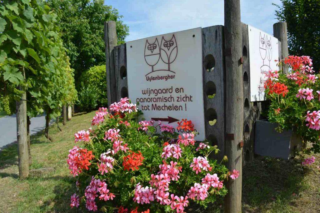 ingang uylenbergher